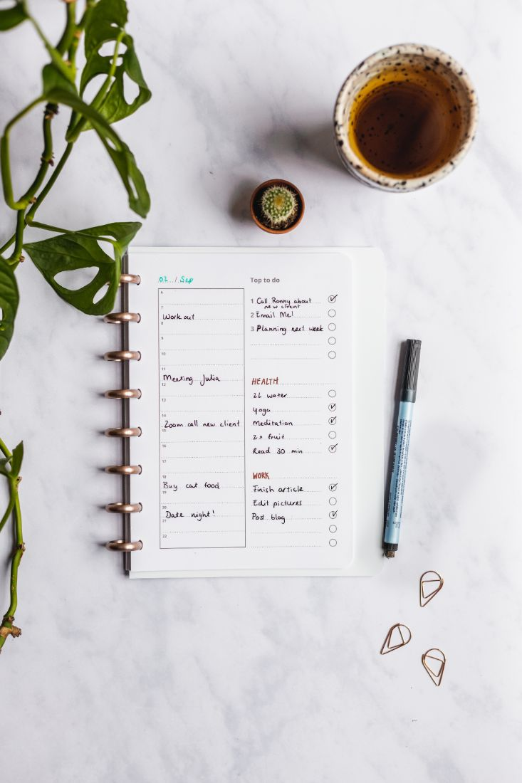 Asoki Planner with roségold disc binding and erasable daily planner with to-do-lists on the right side