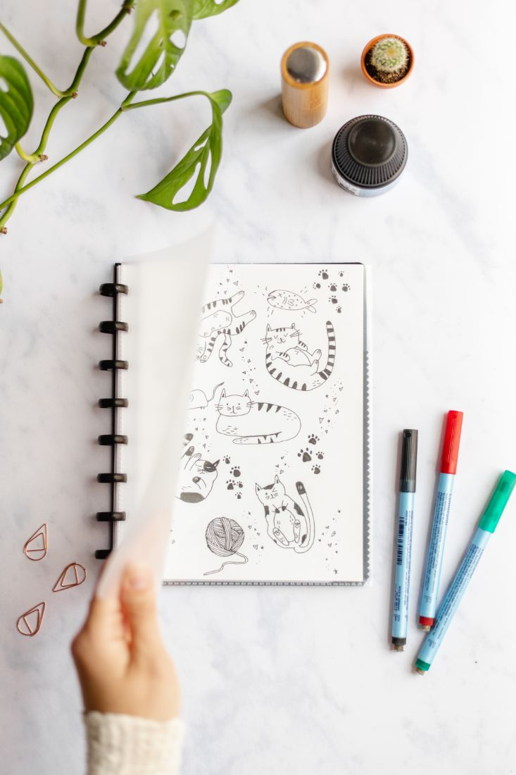 Transparent Asoki planner with customizable cover