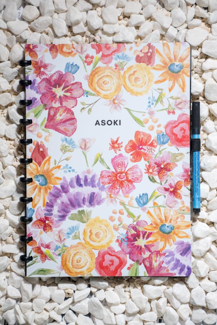 Erasable notebook A4 plain