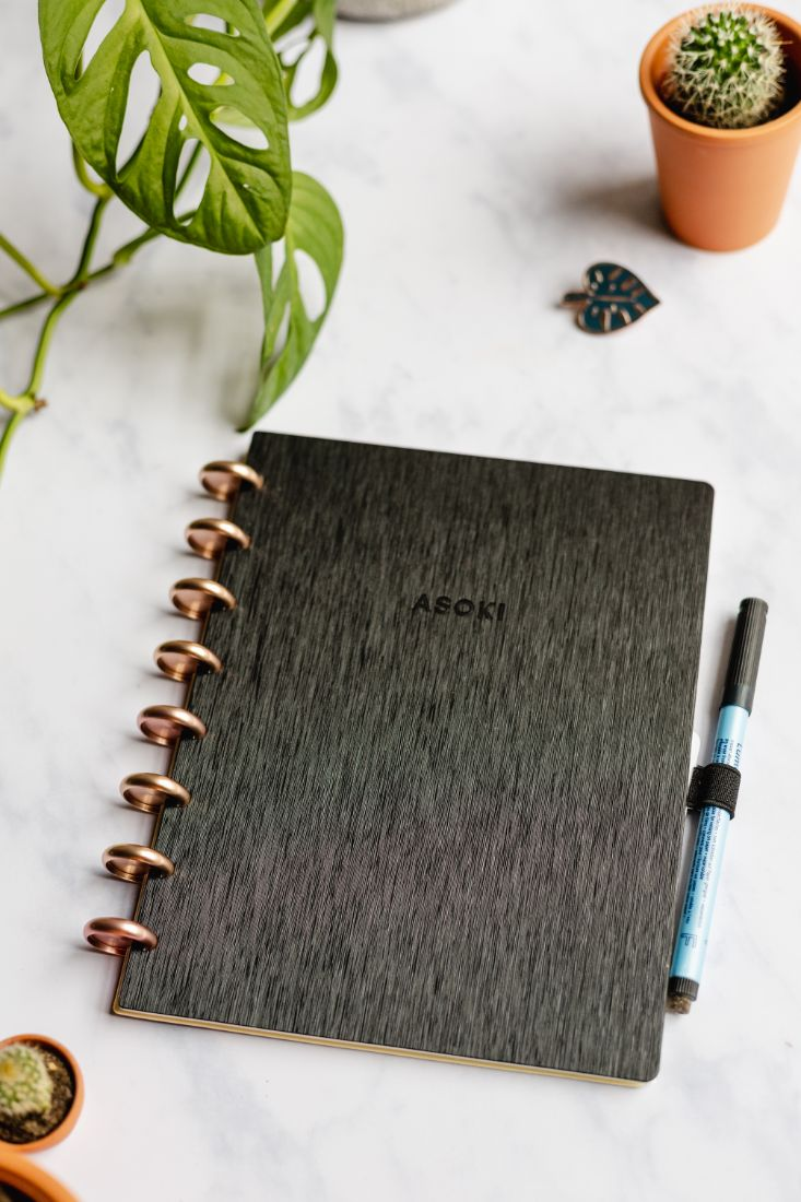 A5 reusable and erasable notebook and planner, with black metal-brushed hardcover and roségold disc binding