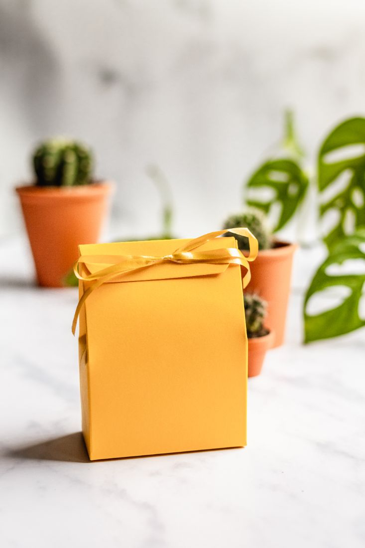 Natural hand soaps gift set, plastic-free packaged in a yellow gift bag